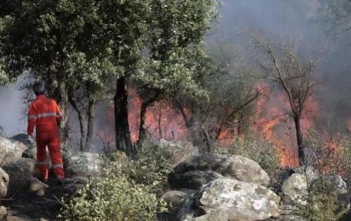 Immagini degli incendi