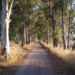 Via i rifiuti ingombranti dalle campagne