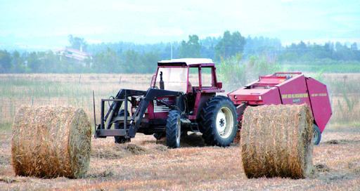 «Così aiuteremo gli agricoltori»