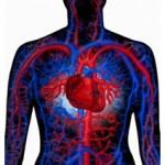 Centro anti-infarto