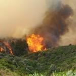 Le fiamme che hanno divorato 300 ettari di bosco lungo tutta la Costa Verde