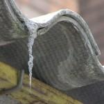 Smaltimento e bonifica di piccoli quantitativi di amianto in strutture private