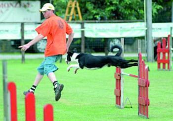 Un parco a costo zero per i cani
