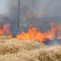 Aziende agricole sfiorate dal fuoco