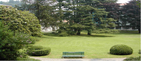 """Progetto sperimentale """"Il Verde in Comune"""""""