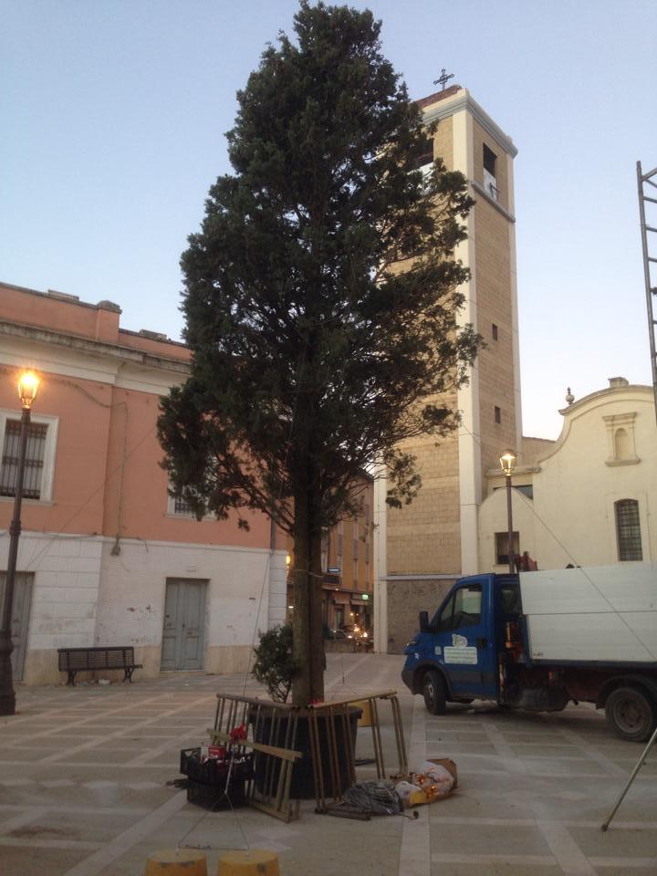 Luci di Natale per l'albero in Piazza Marconi
