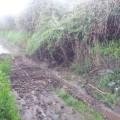Pioggia e danni a Gonnosfanadiga