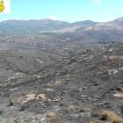 Incendio nel Medio Campidano, le riprese dal drone