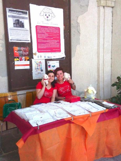 La pecorella solidale a Santa Chiara