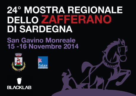 XXIV Mostra regionale dello Zafferano