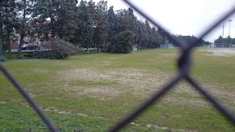 I danni del vento a San Gavino Monreale