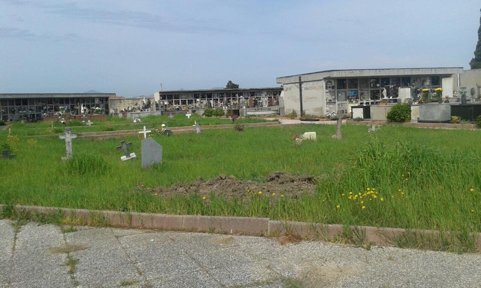 Erba alta in cimitero