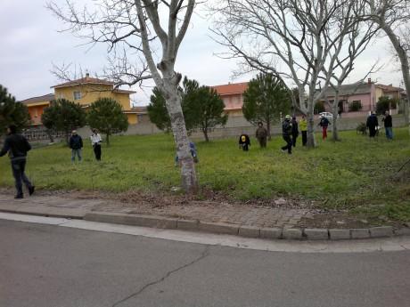 Cura degli spazi verdi in piazza Giovanni XXIII