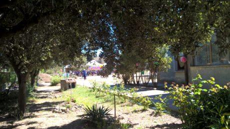 Il giardino in Piazza Giovanni XXIII