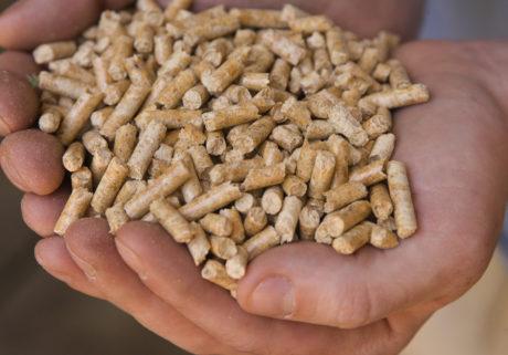 Quanto conviene la stufa a pellet?