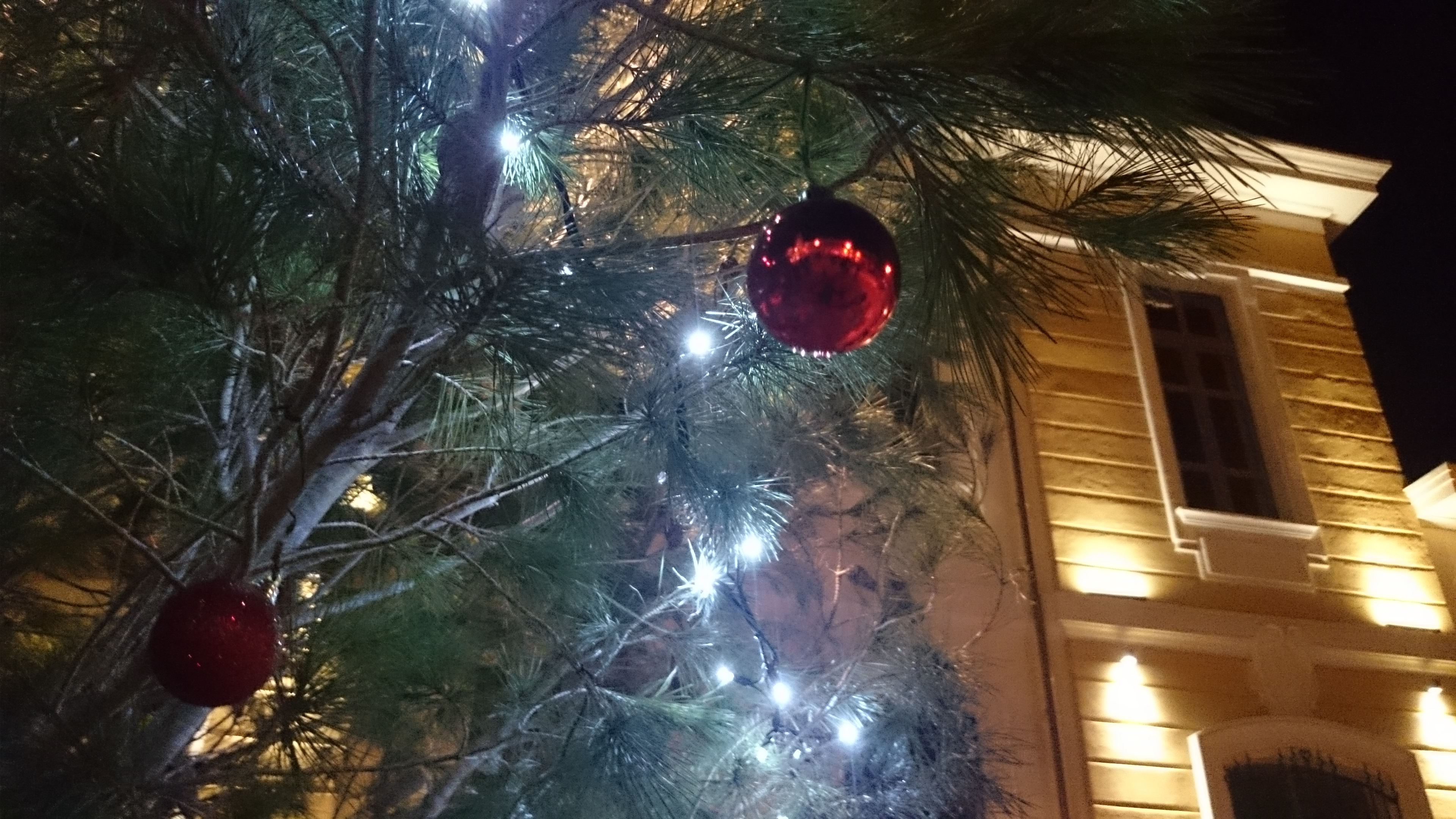 Natale Sangavinese