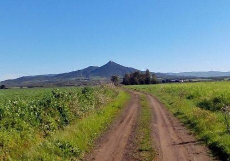 Provincia, Sud Sardegna o Oristano per San Gavino Monreale?