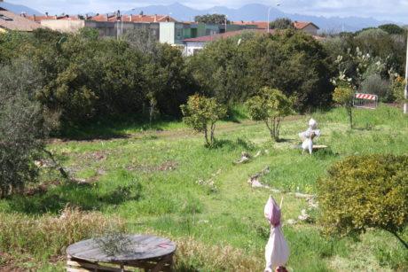 """Un """"Giardino Roccioso"""" in S'Ortu de Tziviriu"""