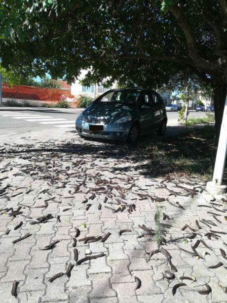 Auto parcheggiate sui marciapiedi, la denuncia di un lettore