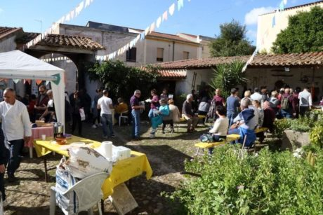 Strade dello Zafferano di Sardegna Dop