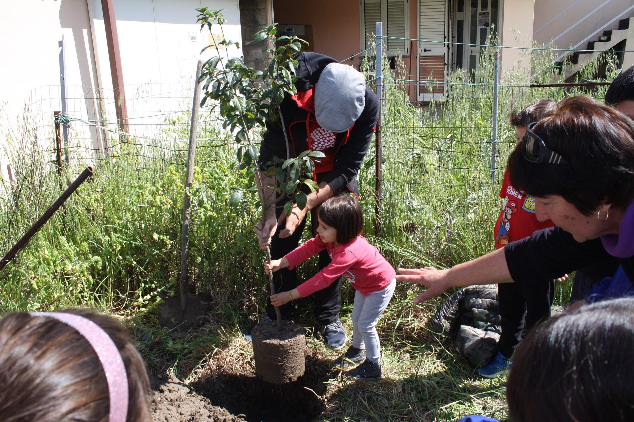 PianTiAMO, il 12 maggio piantumazione collettiva di alberi