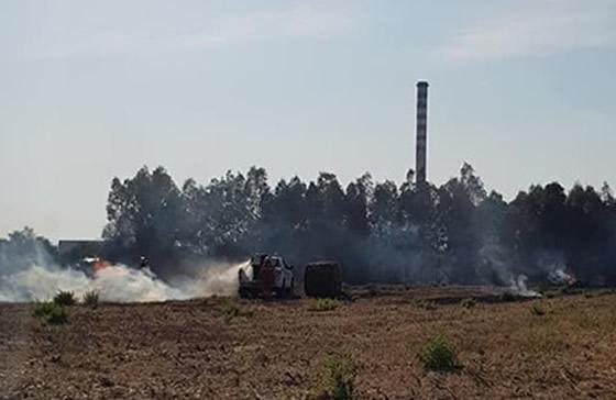 Incendi in Sardegna: decine di fuochi divampati nell'isola, colpita anche San Gavino Monreale