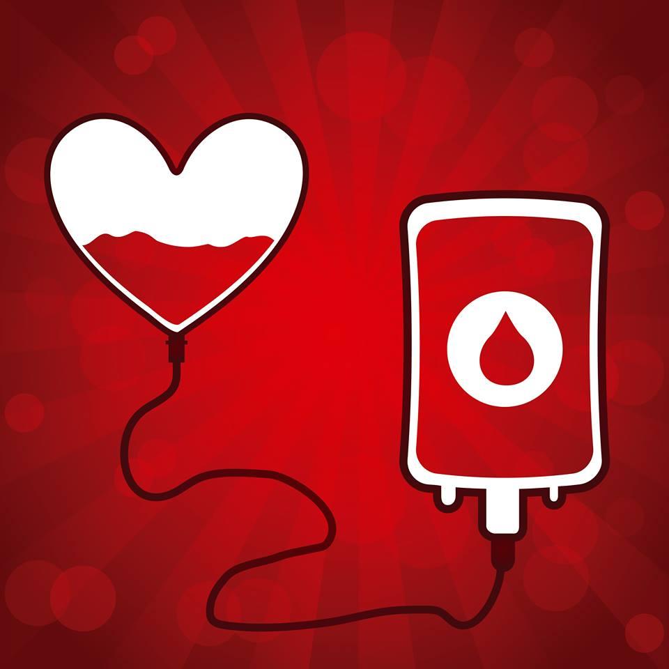 Donazione estiva, appello dell'ospedale per scongiurare carenze di sangue