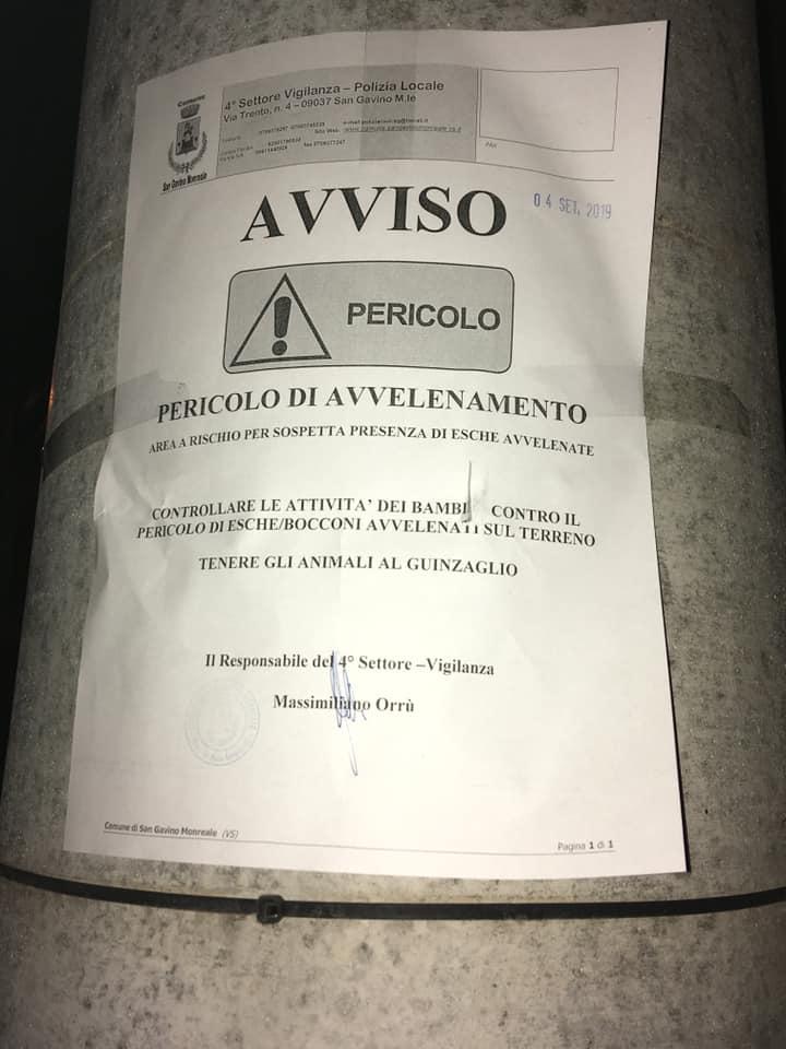 Attenzione a San Gavino, bocconcini mortali per cani e gatti