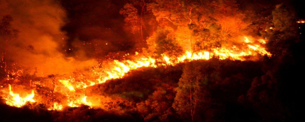 Allerta incendi in Sardegna: mercoledì 1 luglio bollino arancione