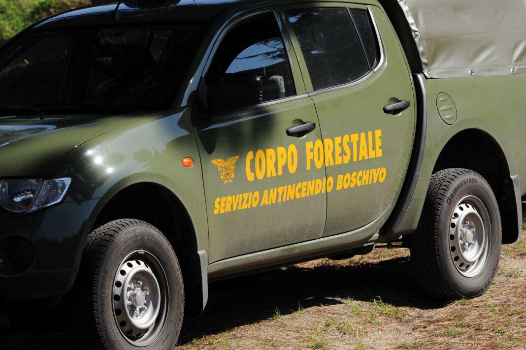 Corpo Forestale, adeguamento indennità di funzione a quella delle Forze di Polizia