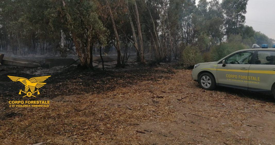 Serramanna, appicca incendio ad un bosco: piromane arrestato in flagranza